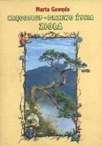 Gaweda Marta - Kręgosłup drzewo życia, zielarstwo
