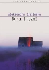 Bura i szał - Zielińska Aleksandra