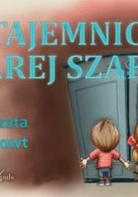 W tajemniczej starej szafie - Gintowt Małgorzata