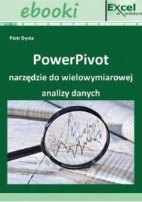 PowerPivot - narzędzie do wielowymiarowej analizy danych - Dynia Piotr, Wiśniewski Paweł
