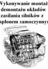 Wykonywanie montażu i demontażu układów zasilania silników z zapłonem samoczynnym