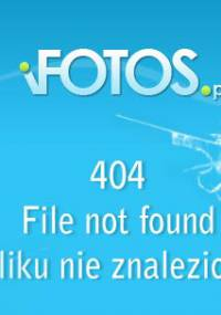 Budowa Stron Internetowych - Dodatek Do Rzeczpospolita Płyta CD