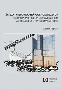 Ścieżki niepowodzeń gospodarczych. Redukcja zagrożenia niepowodzeniem jako element strategii małej firmy - Ropęga Jarosław