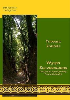 Wyspa zaczarowana - Zubiński Tadeusz