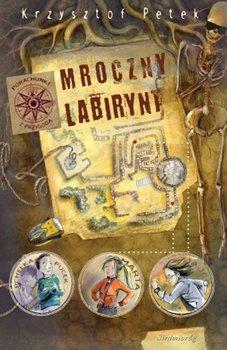 Mroczny labirynt - Petek Krzysztof