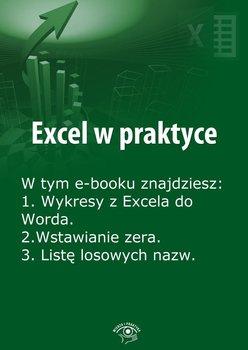Excel w praktyce. Wydanie lipiec 2014 r. - Janus Rafał