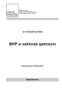BHP w sektorze gazowym - Kuliński Michał