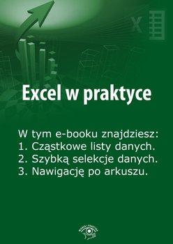 Excel w praktyce. Wydanie luty-marzec 2014 r. - Janus Rafał