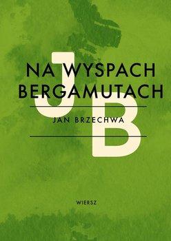 Na Wyspach Bergamutach - Brzechwa Jan