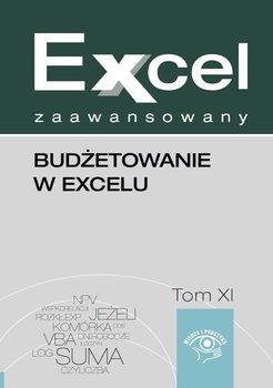 Excel zaawansowany. Tom 11. Budżetowanie w Excelu - Cierzniewska-Skweres Malina, Kudliński Jakub