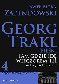 Tam gdzie idę wieczorem - Bitka Zapendowski Paweł